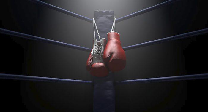 Большой выбор качественных боксерских перчаток в Новосибирске